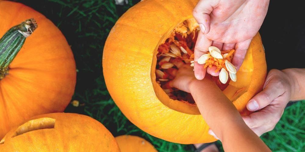 Manfaat biji labu kuning untuk kesehatan